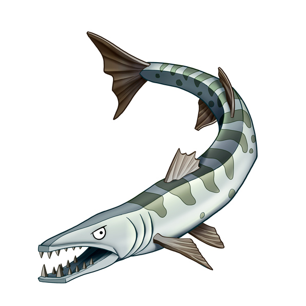 Saltwater Fish I