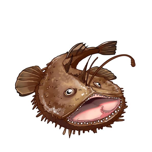 rana pescadora