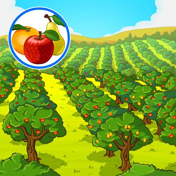 huerto de árboles frutales
