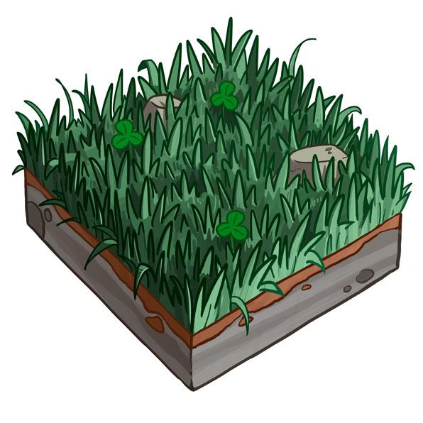 Basic Botany Concepts I
