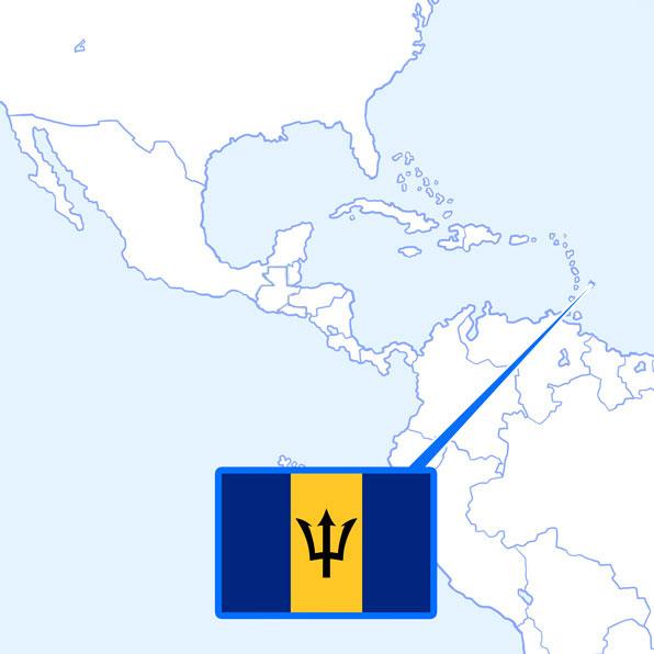 barbadense
