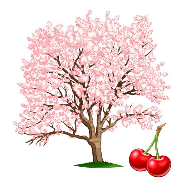 Árboles frutales I