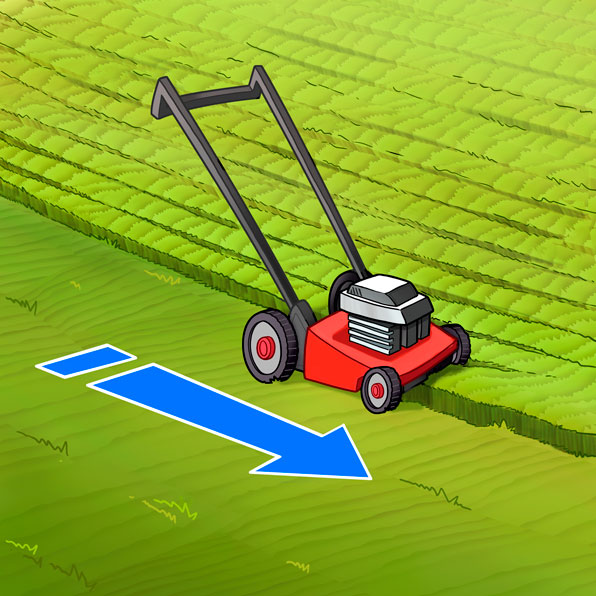 cut the grass