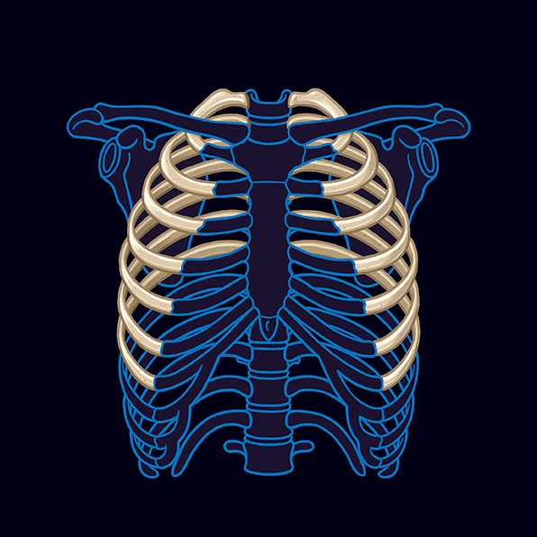true rib