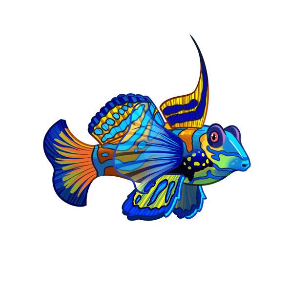 pez mandarín