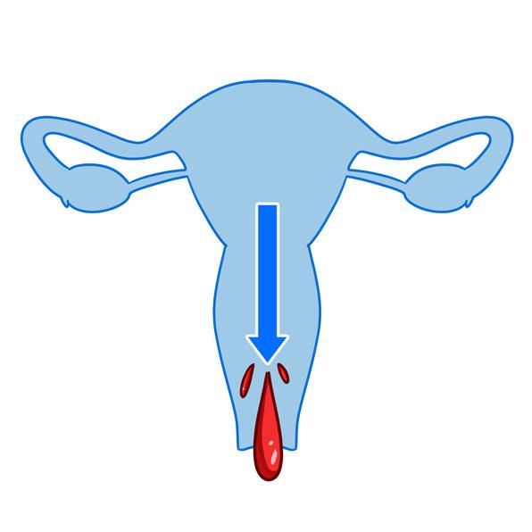 menstruate
