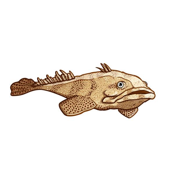 pez sapo